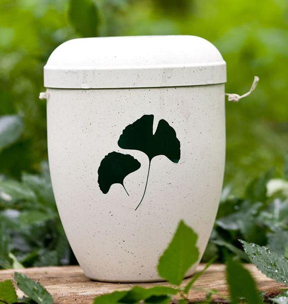 Die Bio-Urne lässt neues Leben entstehen. Lebensversicherungen machen es möglich! Sterben